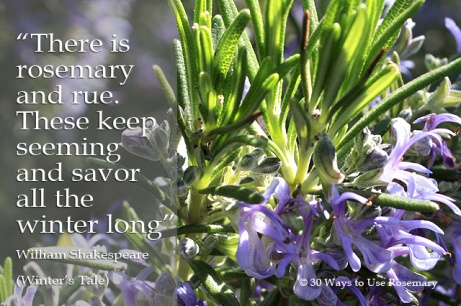 quotes about rosemary