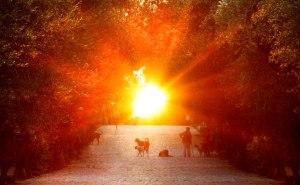 Sun Philopappou