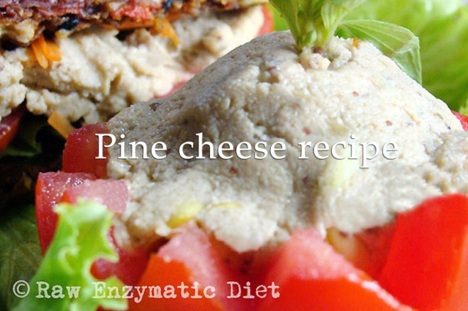 raw food cheese from pine seeds
