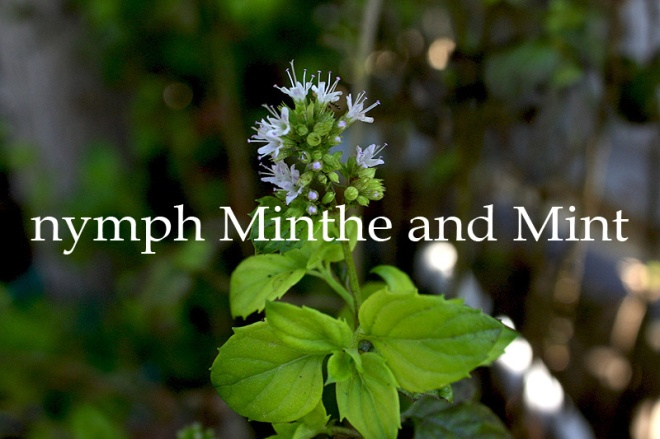 Mint and Greek mythology